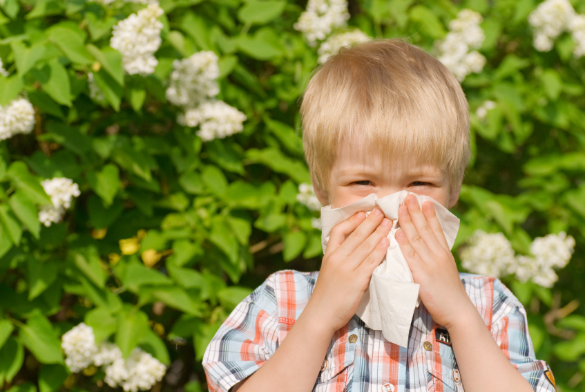 ssiimm hayfeverreliever - راههای مقابله با آلرژی