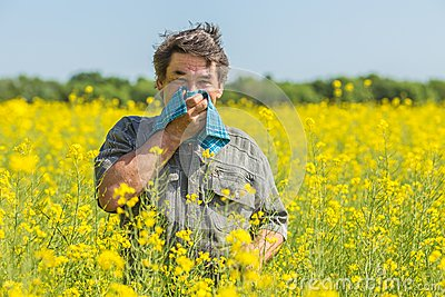 ssiimm man field suffers allergies blowing his nose suffering hay fever 39872669 - راههای مقابله با آلرژی