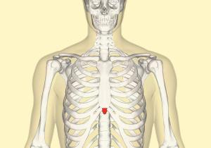 درد استخوان جناغ