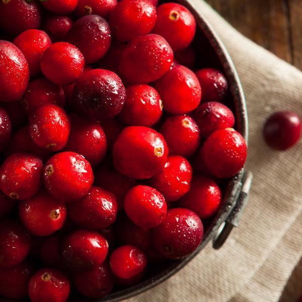ssiimm cranberry 2000x - درمانهای خانگی «سندرم تخمدان پلی کیستیک»